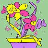 Farfalle e fiori nella colorazione di pentola gioco