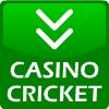 Cricket di casinò gioco