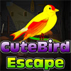 Uccello sveglio Escape gioco
