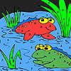 Amici di rana nella colorazione Lago gioco
