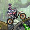 Giungla Moto Trial gioco