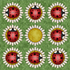 Lady Bug Solitaire gioco