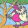 Colorazione rosa pappagallo Lady gioco