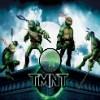 Ninja Turtles stelle nascoste gioco