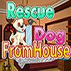 Cane da salvataggio da casa gioco